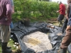 16-creating-wetland-2