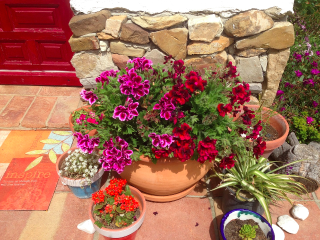 flowers-entrance