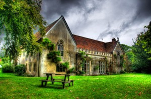 Photo of Abbey, copyright Ruben Martin
